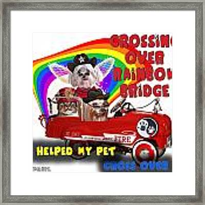 I Helped My Pet Cross Rainbow Bridge Framed Print by Kathy Tarochione