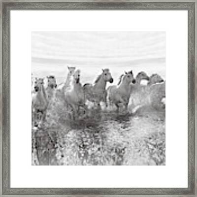 Illusion Of Power (13 Horse Power Though) Framed Print by Roman Golubenko