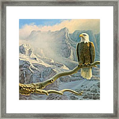In The High Country-eagle Framed Print by Paul Krapf