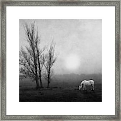 In The Moor Framed Print by Jose C. Lobato