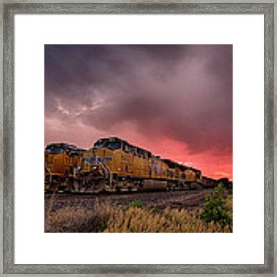 In Waiting Framed Print