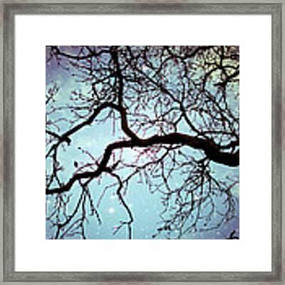 Into The Blue Framed Print by Lupen  Grainne