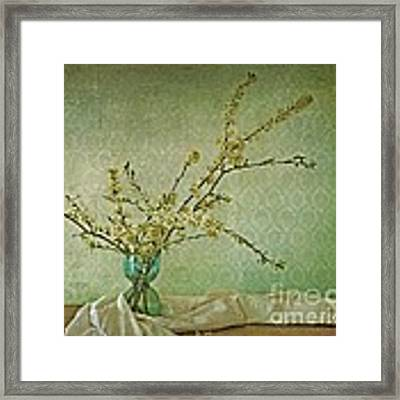 Ivory And Turquoise Framed Print by Priska Wettstein