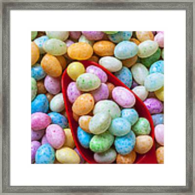 Jelly Beans Framed Print by Garry Gay