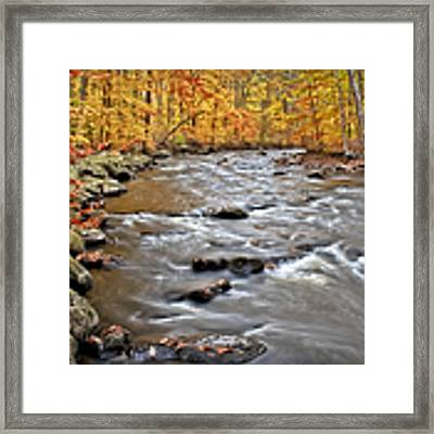 Just Going With The Flow Framed Print by Susan Candelario