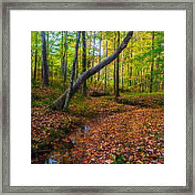 Land Of The Fairies Framed Print by Parker Cunningham