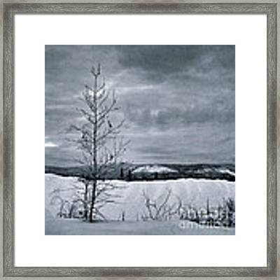 Land Shapes 15 Framed Print by Priska Wettstein