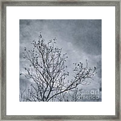 Land Shapes 16 Framed Print by Priska Wettstein