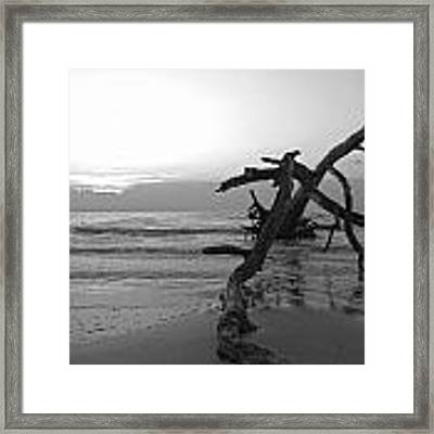 Last Chance Framed Print by Glenda Wright