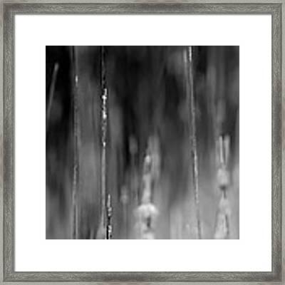 Life's Ripple - Left Framed Print by Steven Santamour