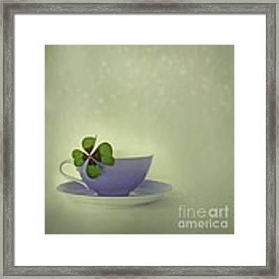 Little Luck Framed Print
