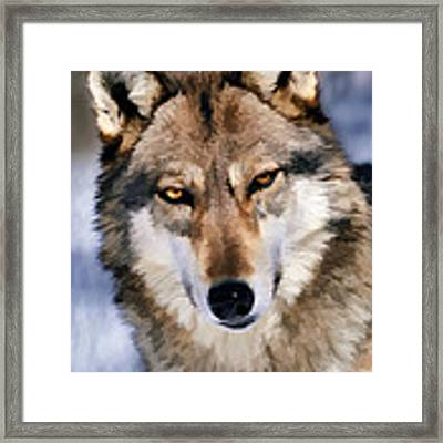 Look Me In Eyes And Say That Framed Print by Dan Friend