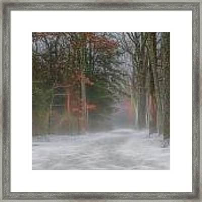 Magic In The Fog 3 Framed Print by Beth Sawickie