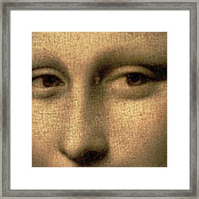 Mona Lisa    Detail Framed Print