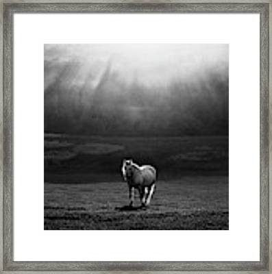 Morning Appearance Framed Print by