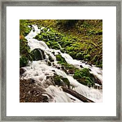Mossy River Flowing. Framed Print