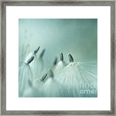 New Generation Framed Print