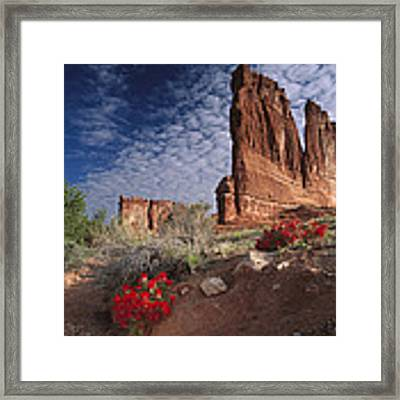 Paintbrush And The Organ Rock Framed Print by Tim Fitzharris