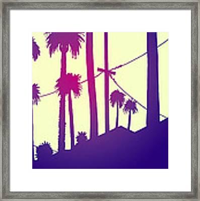 Palms 2 Framed Print by Giuseppe Cristiano