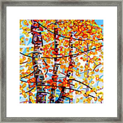 Panoply Framed Print by Mandy Budan