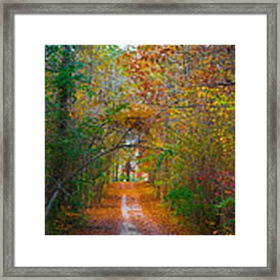 Path To The Fairies Framed Print by Parker Cunningham