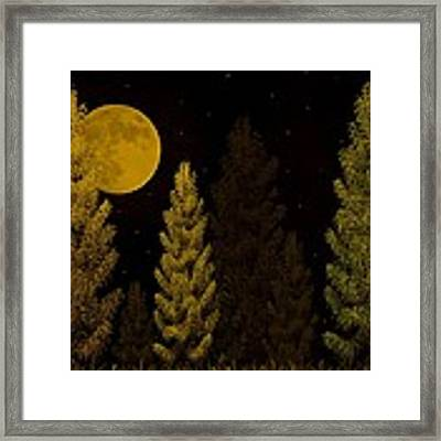 Pine Forest Moon Framed Print by David Dehner
