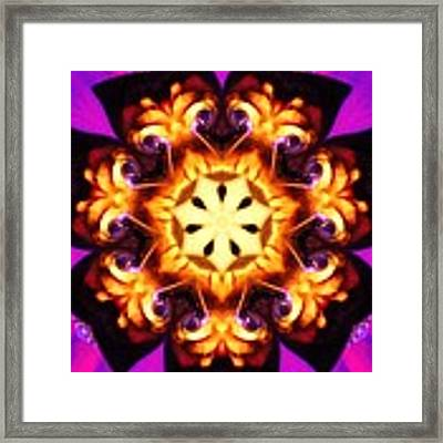 Pizzaz Framed Print by Gigi Dequanne