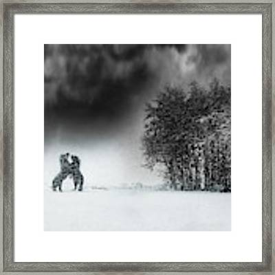 Playing Framed Print by Bernadette Heemskerk
