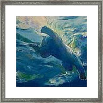 Polar Bear Swim Framed Print