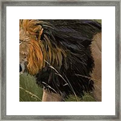 Savannah Patrol Framed Print