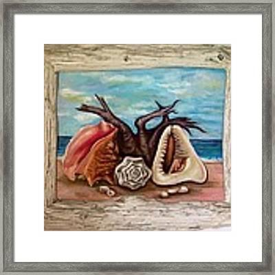 Shells Framed Print by Katerina Kovatcheva