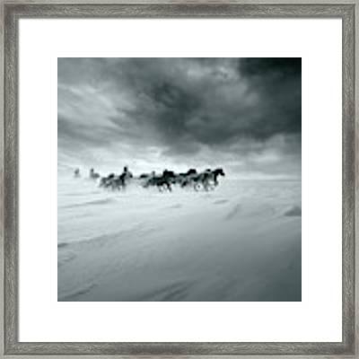 Snowy Field Framed Print by Shu-guang Yang