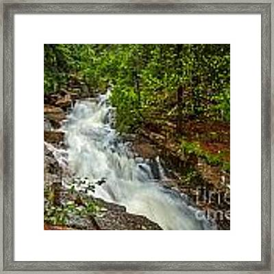 Spring Stream In Acadia Framed Print by Susan Cole Kelly
