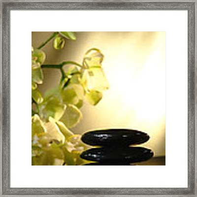 Stone Cairn And Orchids Framed Print