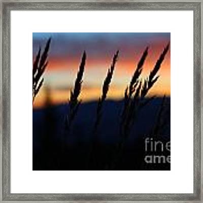 Sunrise From Mt. Elbert Framed Print by Kate Avery