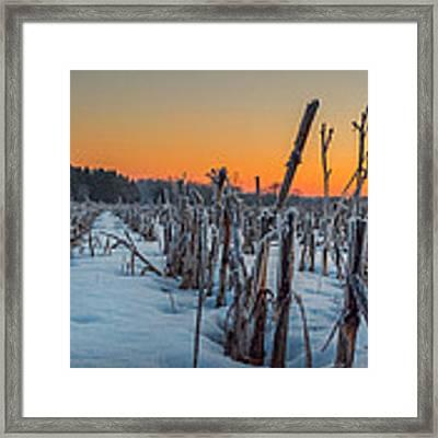 Sunrise Framed Print by Garvin Hunter