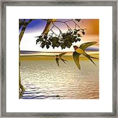 Swallows At Sunset Framed Print by Sandra Bauser Digital Art