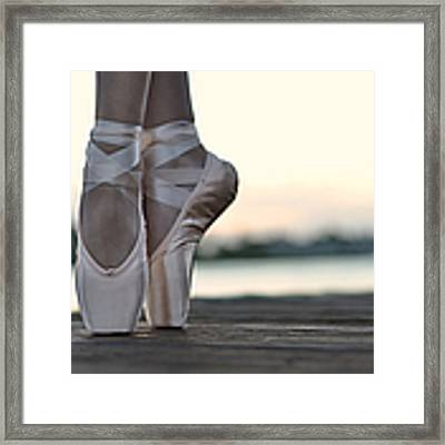 Sylph Framed Print by Laura Fasulo