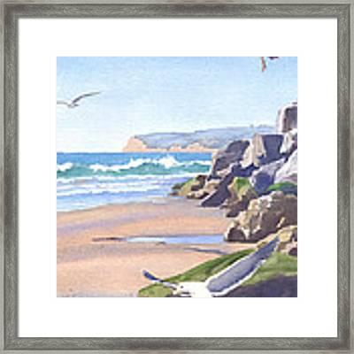 Three Seagulls At Coronado Beach Framed Print