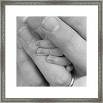 Tiny Fingers In A Big World Framed Print by Kelly Hazel