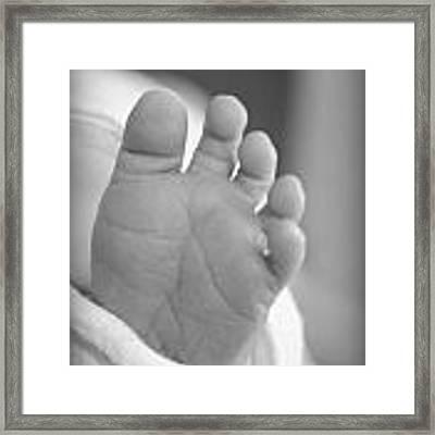 Tiny Toes Framed Print by Kelly Hazel