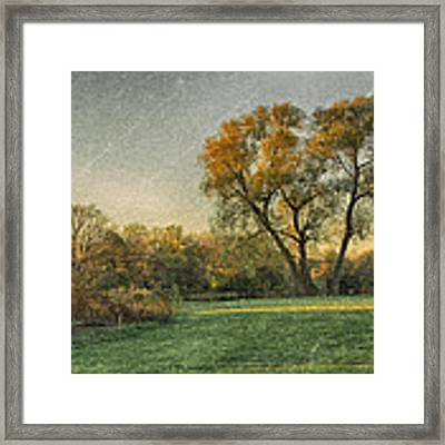 Touched By Light Framed Print by Garvin Hunter