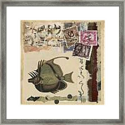 Tropical Fish Collage Framed Print by Carol Leigh