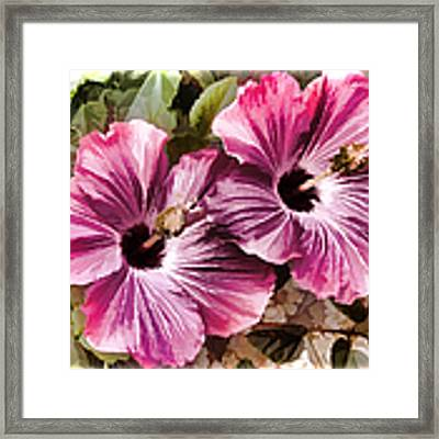 Twin Hibiscus Framed Print by Donna Proctor