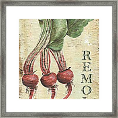 Vintage Vegetables 3 Framed Print