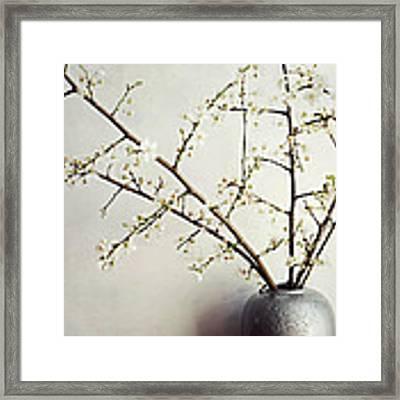 Zen Bouquet Framed Print by Lupen  Grainne