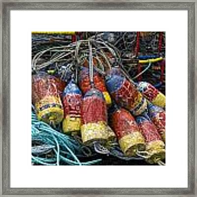 Buoys And Crabpots On The Oregon Coast Framed Print by Carol Leigh