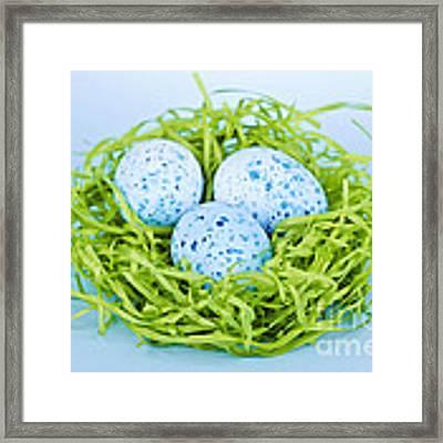 Blue Easter Eggs  Framed Print