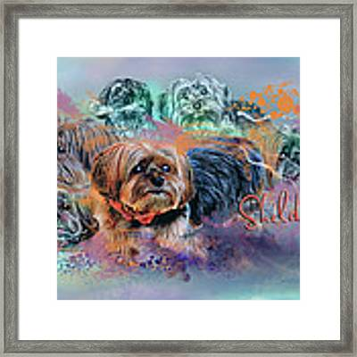 Another Birthday 112 Years Framed Print by Kathy Tarochione