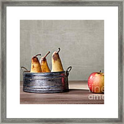 Apple And Pears 01 Framed Print by Nailia Schwarz